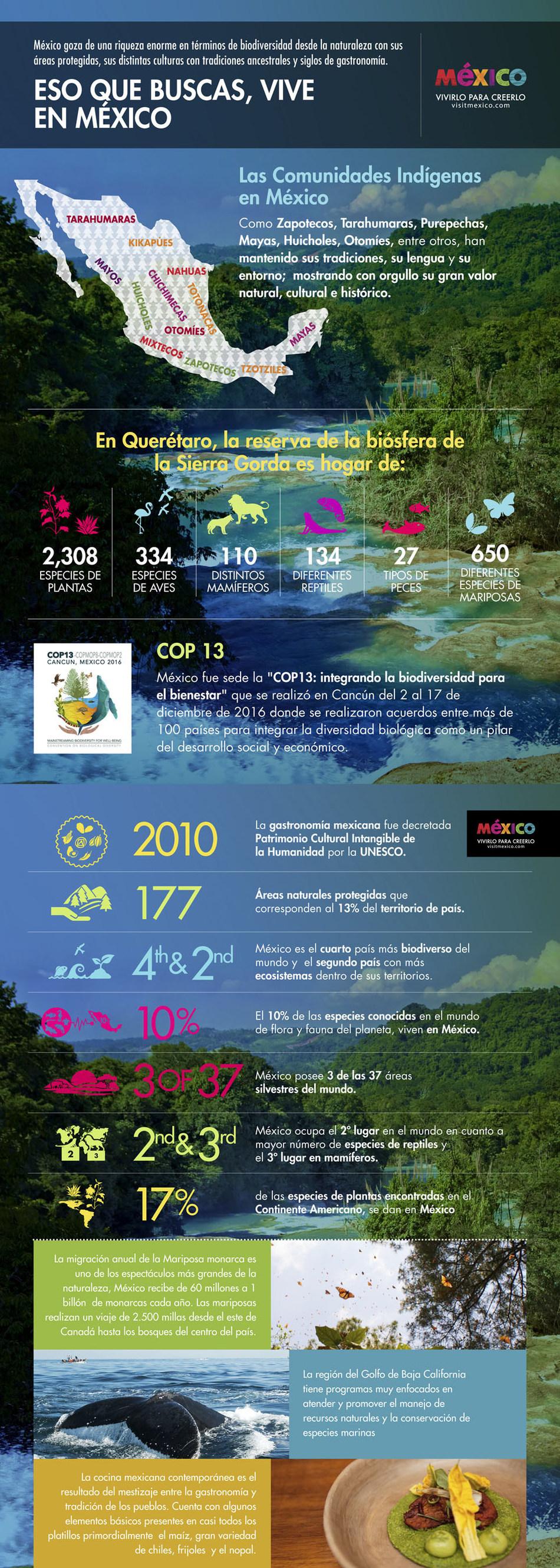 Mexico, por un mundo mas sustentable: 13ª Conferencia de las Partes del Convenio sobre Diversidad Biologica de Naciones Unidas (PRNewsFoto/Mexico Tourism Board)