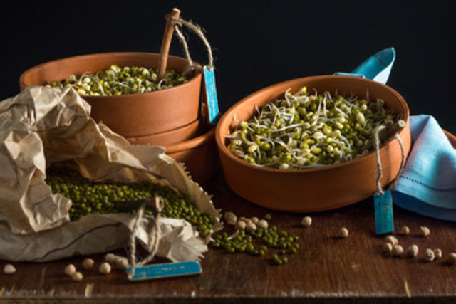 Sprouts are high in protein and essential vitamins and minerals. Plus you can grow them from your own kitchen. Visit your local health food store or www.chfa.ca for more information. (CNW Group/Canadian Health Food Association)