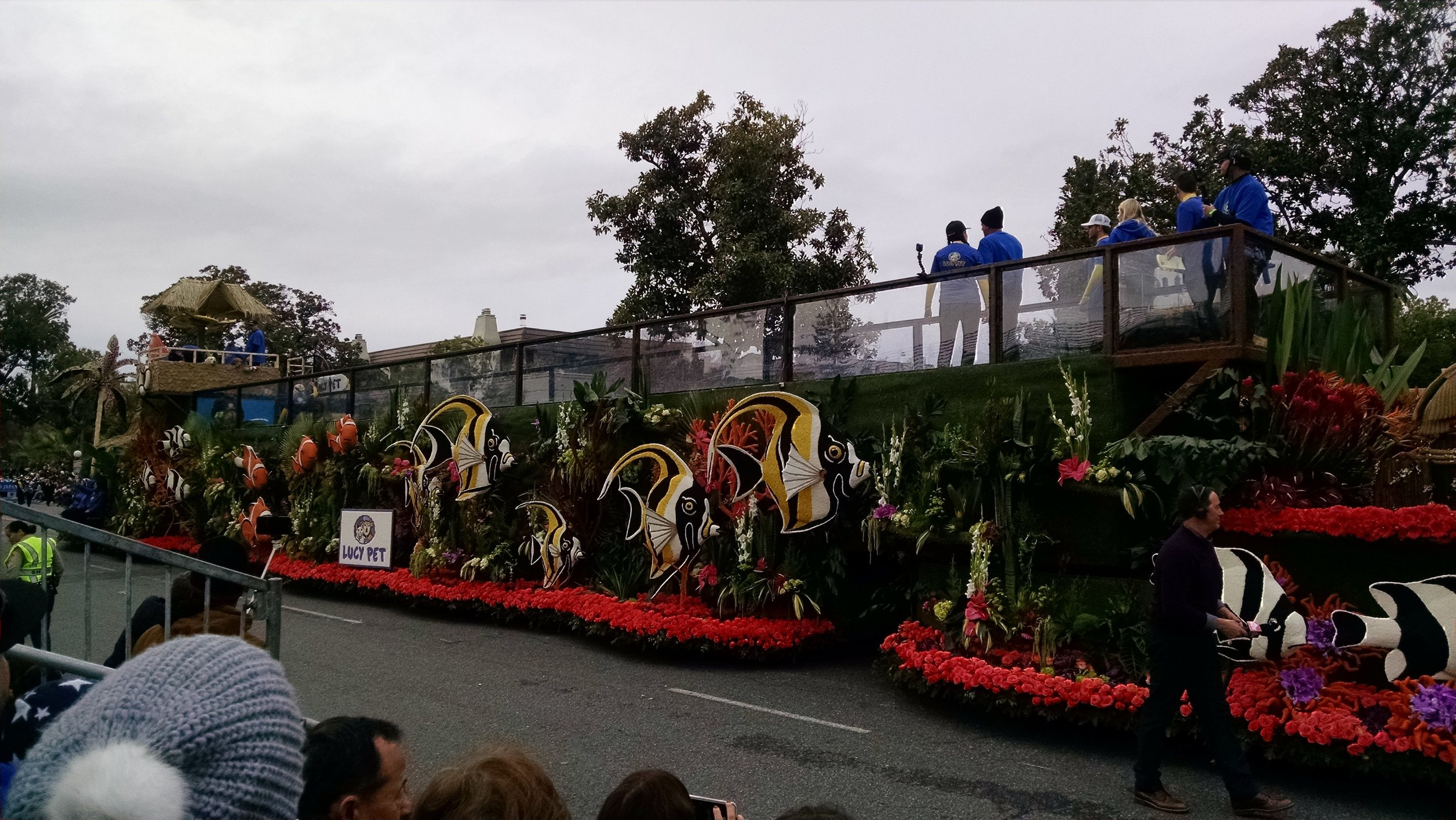 surfin dogs rose parade float wins extraordinaire trophy. Black Bedroom Furniture Sets. Home Design Ideas