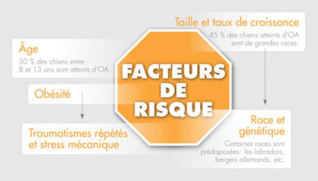 Facteurs de risque (Groupe CNW/Institut canadien de la santé animale)