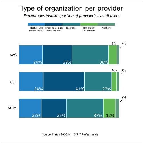Type of Organization Per Provider