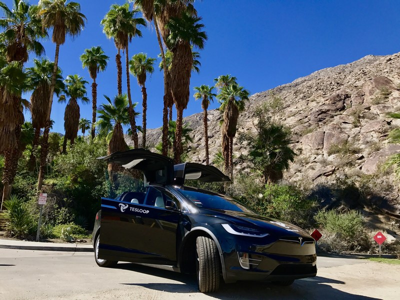Tesloop's first vehicle in service, a 2015 Tesla Model S, is passing the 250,000 mile mark, running exclusively on Goodyear tires.