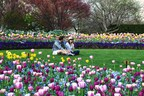 Dallas Arboretum Presents Dallas Blooms: Peace, Love and Flower Power with Explosions of Color Throughout the 66-Acre Garden