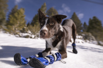 Boot the Boot with Morton Safe-T-Pet