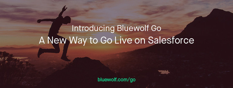Introducing Bluewolf Go, a new way to go live on Salesforce. www.bluewolf.com/go