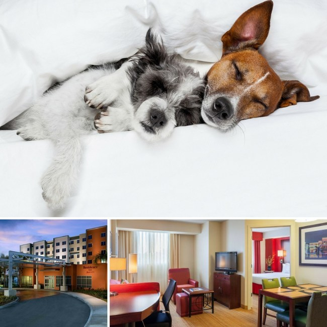 Residence Inn Miami Airport is offering guests traveling with a pet complimentary treats to make them feel welcome this year. For information, visit www.marriott.com/MIAAS or call 1-305-642-8570.