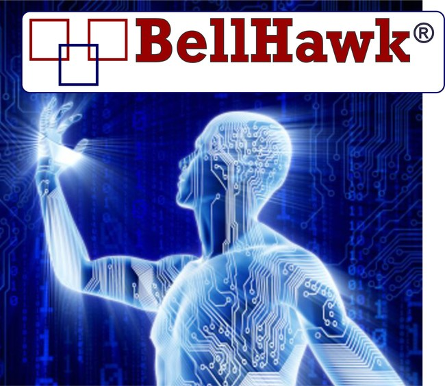 BellHawk Systems Corporation