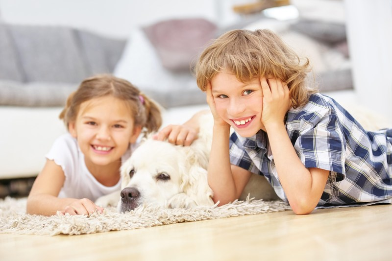 Pets are a child's best friend (PRNewsFoto/Mars Petcare)