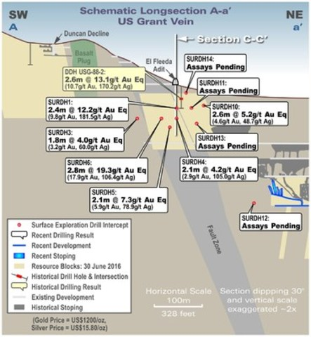 Figure 2  Long Section of US Grant Vein (Subset of Figure 1) with Assay Results (true width) (CNW Group/Transatlantic Mining Corp.)