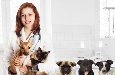 VetResQ, an advanced, first-in-kind blood purification technology manufactured by U.S. based CytoSorbents Corporation (NASDAQ: CTSO) to treat deadly inflammation and toxic injury in animals is now available for the U.S. veterinary market.