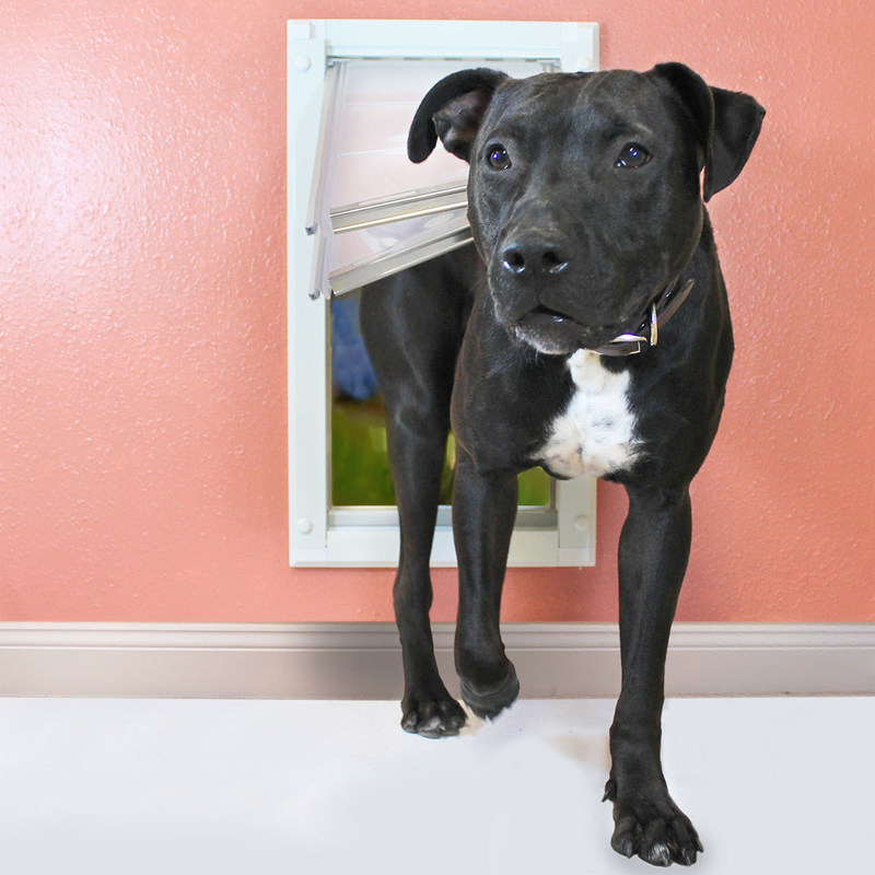 Energy efficient dog door is perfect for all pets.