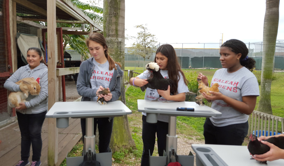 Hialeah Gardens Middle School students using Ergotron's LearnFit(R) Adjustable Standing Desk