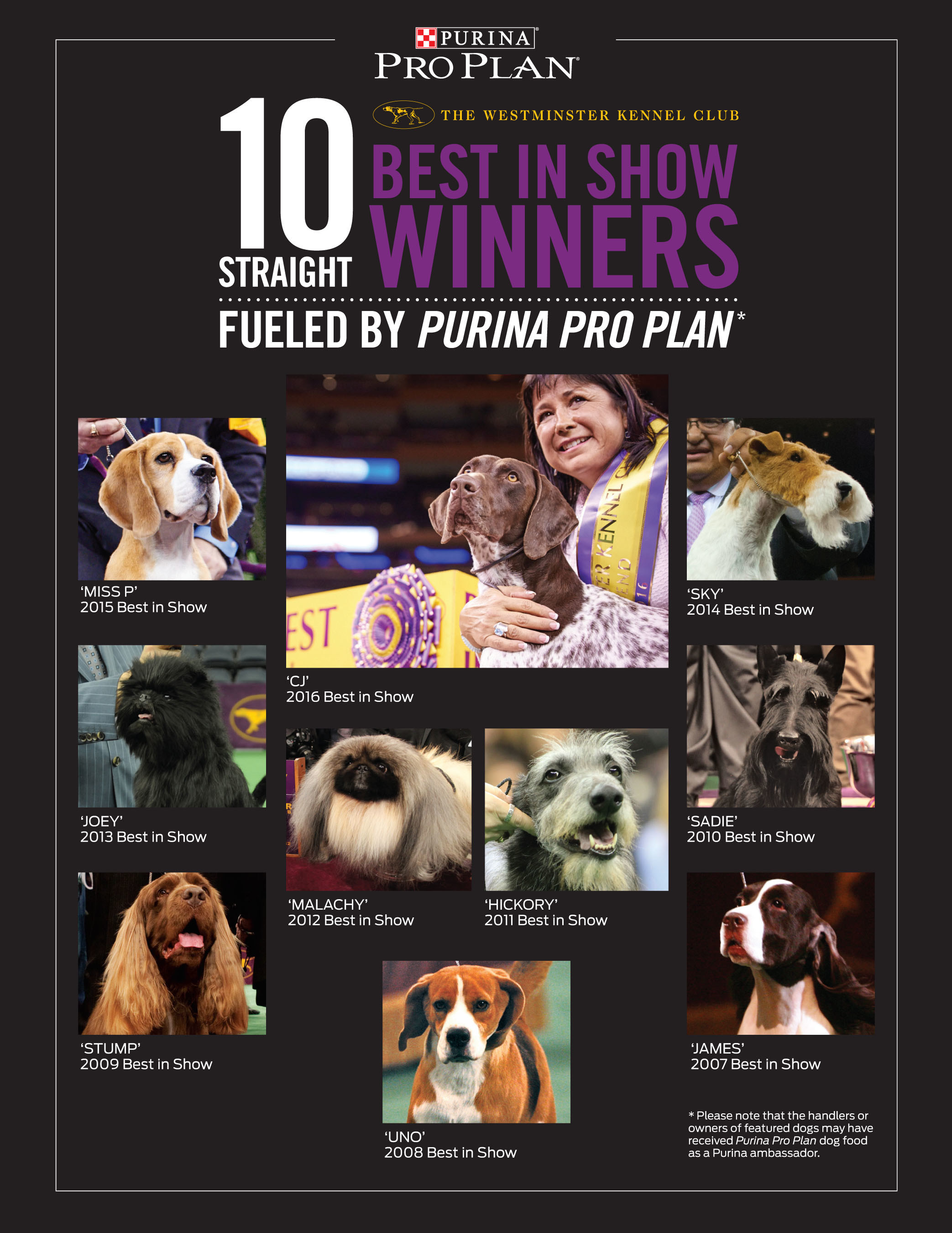 The past 10 Best in Show winners of the Westminster Kennel Club Dog Show has been fueled by Purina Pro Plan dog food.