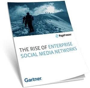 The Rise of Enterprise Social Media Networks Report