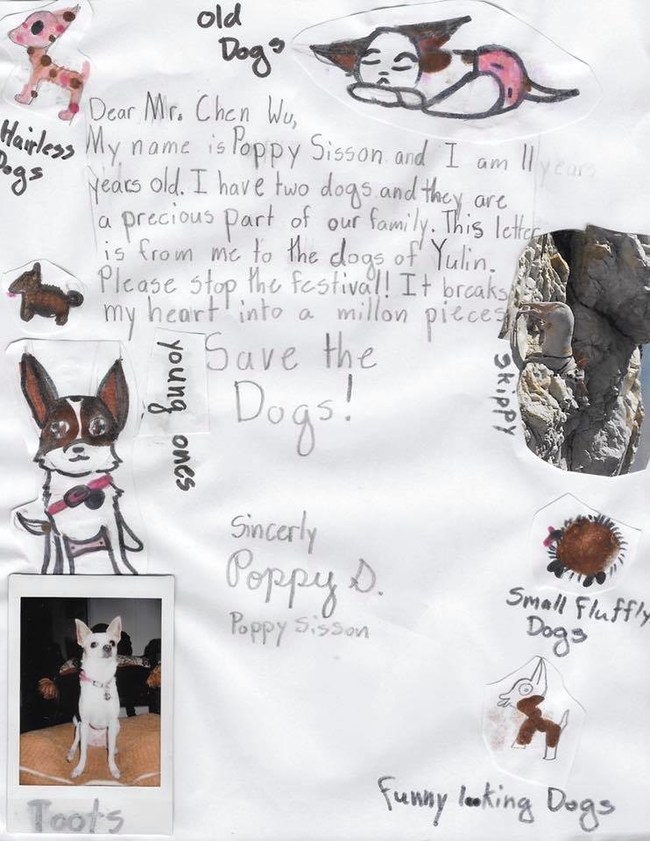 11-year-old Poppy's heartfelt letter to help end the Yulin Dog Meat Festival! Animal Hope and Wellness Foundation's goal is to collect 100,000 handwritten letters, such as these, from children across the globe. Marc Ching will personally deliver the letters to Mr. Chen Wu, governor of the Guangxi Provence.