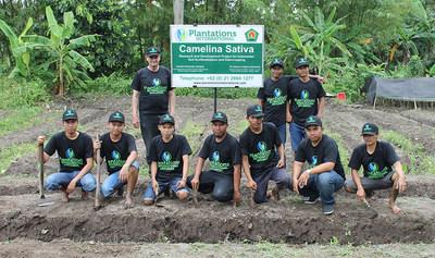 Plantations International Camelina Sativa seed farm team in Yogyakarta, Indonesia.