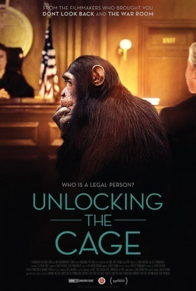 'Unlocking the Cage' will be screened at the Animal Film Festival
