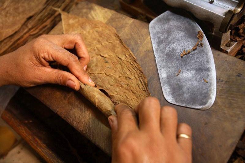 Cuban artisan making handmade habano (PRNewsFoto/HABANOS SA)