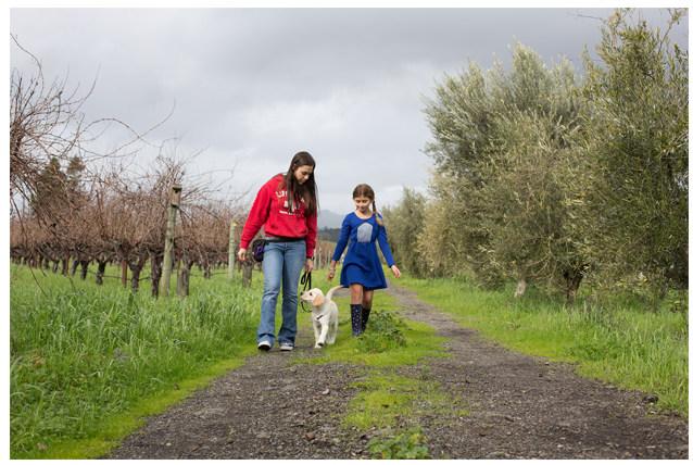 Carleigh Long (dog trainer) Honey and Sophia Honig taking at walk in the vineyard.