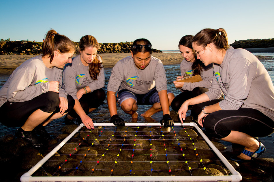 Students conduct field research supported by the Honda Marine Science Foundation.