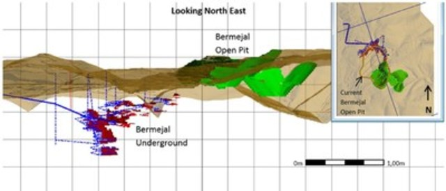 Figure 3 – Bermejal Underground PEA Cross Section (CNW Group/Leagold Mining Corporation)
