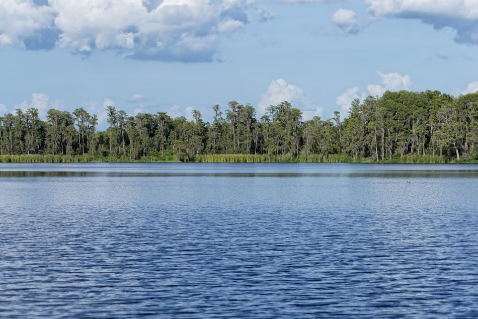 Dockable 2 to 10 Acre Homesites Available!