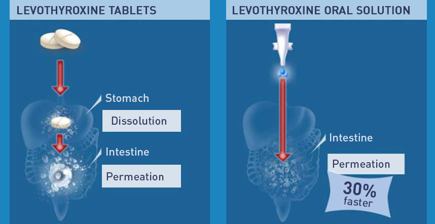 Assimilation of levotiroxine tablet vs oral solution (PRNewsFoto/IBSA Institut Biochimique SA)