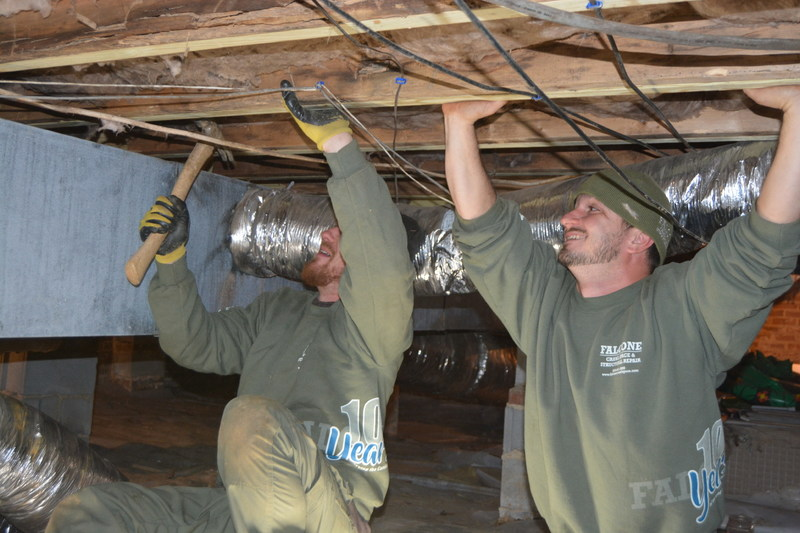 Folks who live the crawl life at Falcone Crawl Space