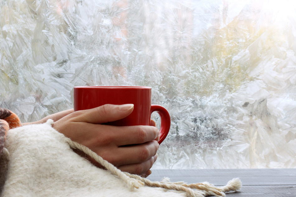 """""""It never fails, the day your heating system or boiler goes out is usually the coldest day of the year,"""" said Mike Agugliaro, co- owner of Gold Medal Service."""