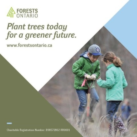 Starting February 26th the public can support Forests Ontario by making a donation at any of the more than 650 LCBO stores throughout Ontario. Donation boxes for Forests Ontario will be displayed at LCBO checkout counters until March 31st. (CNW Group/Forests Ontario)