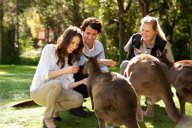 Healesville Sanctuary Courtesy: Visit Victoria