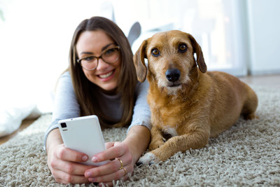 Activ4Pets lets pet owners access their pet's complete health history and even consult with their veterinarian online, through an easy to use app and web portal
