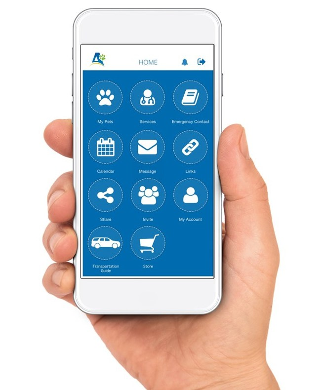 Easy and convenient, Activ4pets lets you take vital information about your pet, wherever you go.