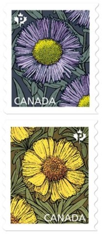 "Canada Post ""picks"" Daisies for 2017 (CNW Group/Canada Post)"