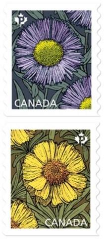 Un peu, beaucoup, passionnément : les marguerites (Groupe CNW/Postes Canada)