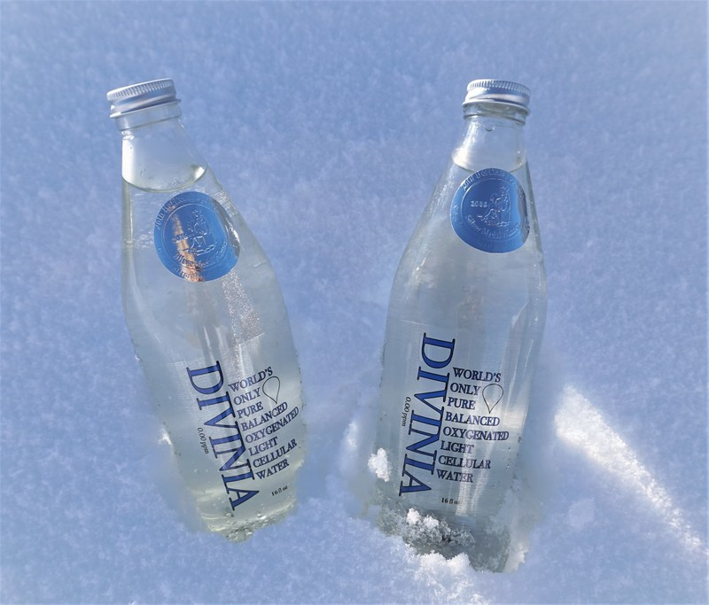 Picture of 2 Divinia bottles in snow