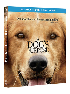 Based On 'The New York' Times And 'USA Today' Best-selling Novel: 'A Dog's Purpose'