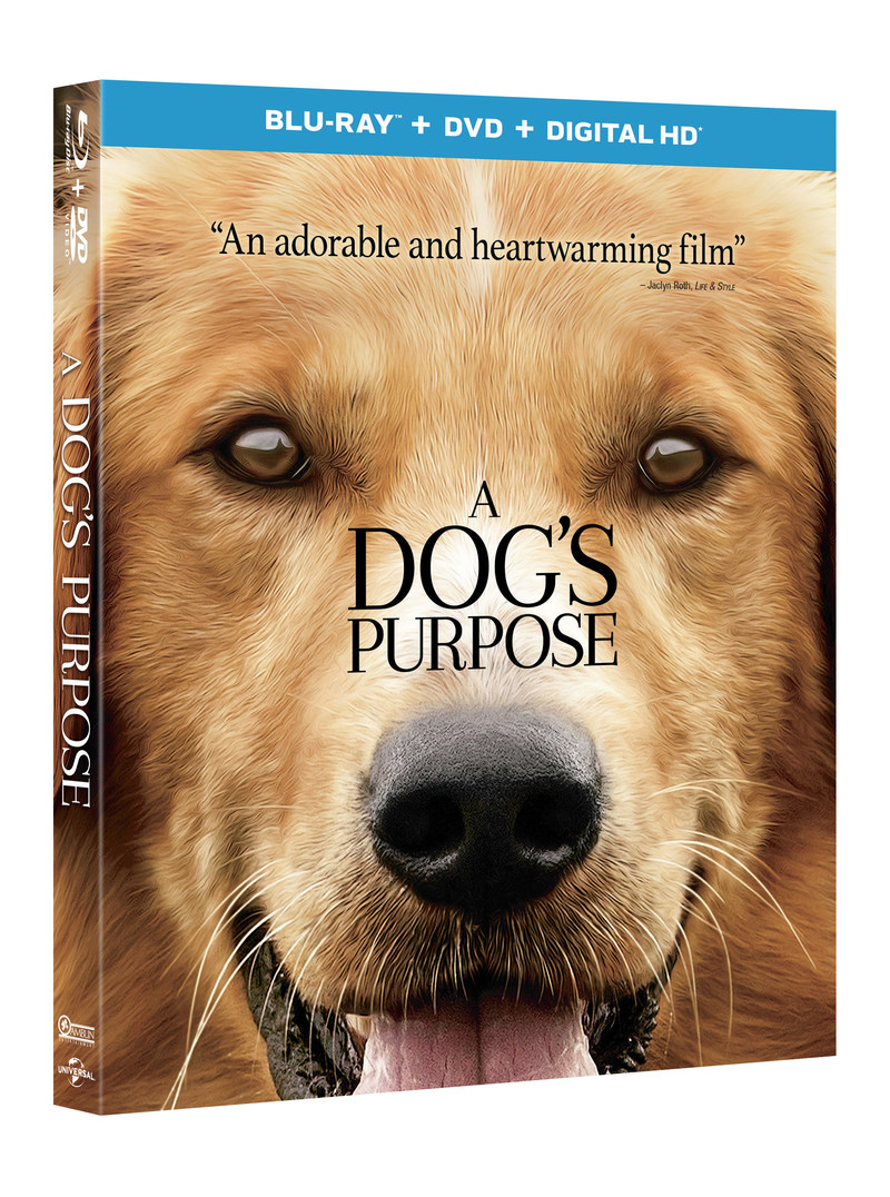 From Amblin Entertainment and Universal Pictures Home Entertainment: A Dog's Purpose
