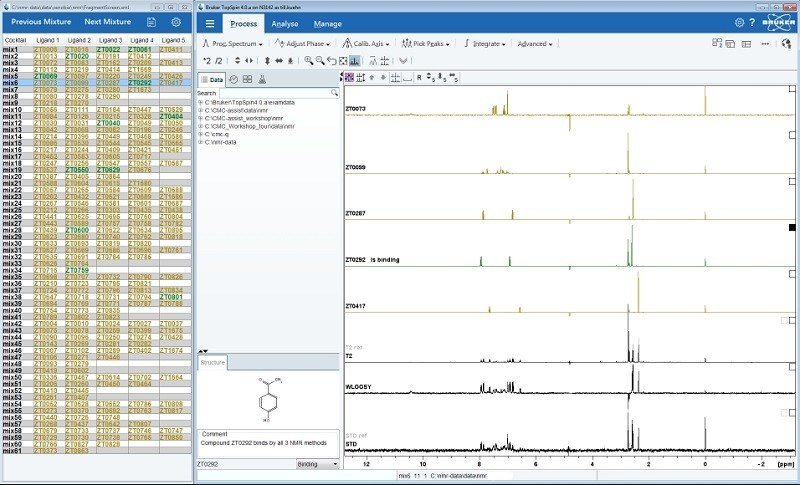 NMR Fragment-Based Screening