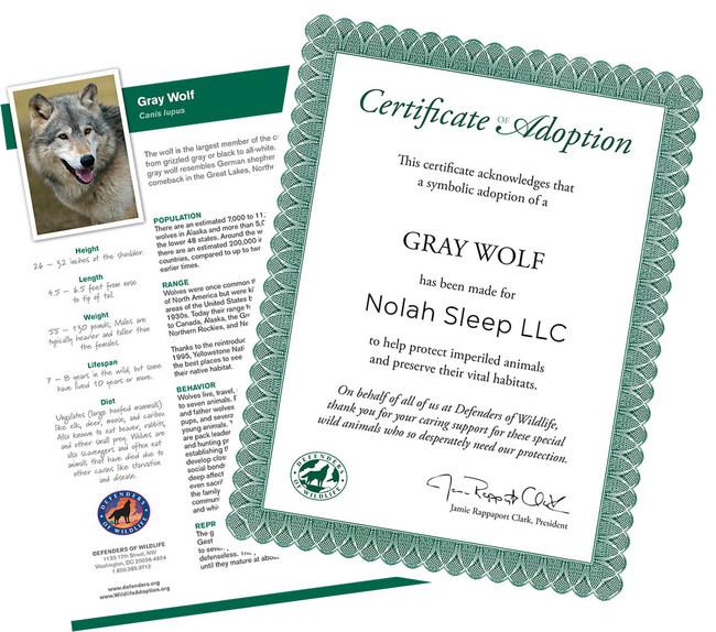 Nolah Wildlife Adoption Certificate