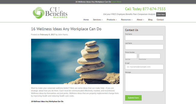 Wellness Blog Website Screenshot