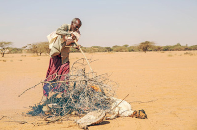In Somalia, Saîd burns his goats that have died. After walking for more than 100 km, he still has difficulty finding enough water and food for him or his livestock. (CNW Group/World Vision Canada)