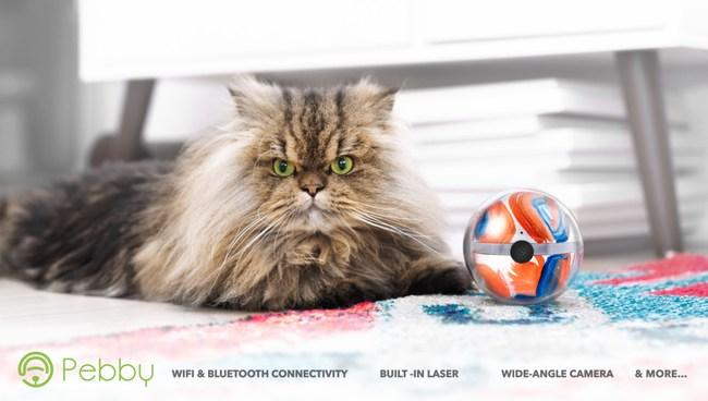Pebby the Robotic Pet Sitter is a Cat's Best Friend!