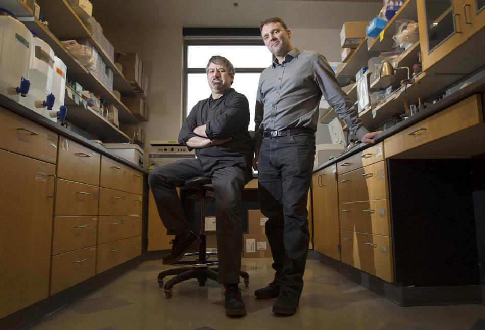 Alec Hirsch, Ph.D. (left, sitting) and Daniel Streblow, Ph.D. (right, standing)