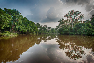 The Congo Basin Blue Fund will contribute to efforts to reduce global warming and improve local economies (PRNewsFoto/The Brazzaville Foundation)