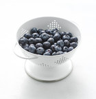 New Research Examines Blueberries' Effect On Cognitive Function In Healthy Older Adults