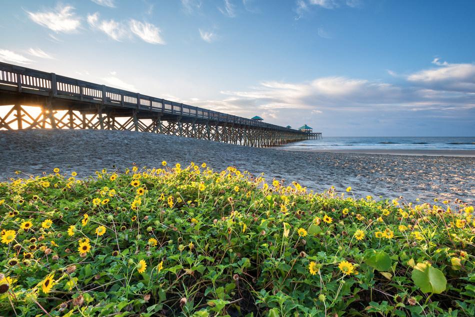 A new season opens for Folly Beach and FollyBeach.com.