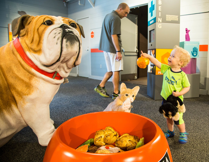 At the Better with Pets exhibit at Purina Farms, pet lovers of all ages can celebrate the powerful relationship people and pets share. The exhibit is inside the Visitor Center, which re-opens for the 2017 season on Saturday, March 18.