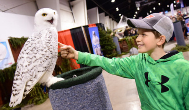 Logan Toupin of Bancroft, ON gets a bird's eye view with snowy owl, Tiquak, at The 70th annual Toronto Sportsmen's Show. Hosted at The International Centre, the show runs until Sunday, March 19th. (CNW Group/Toronto Sportsmen's Show)