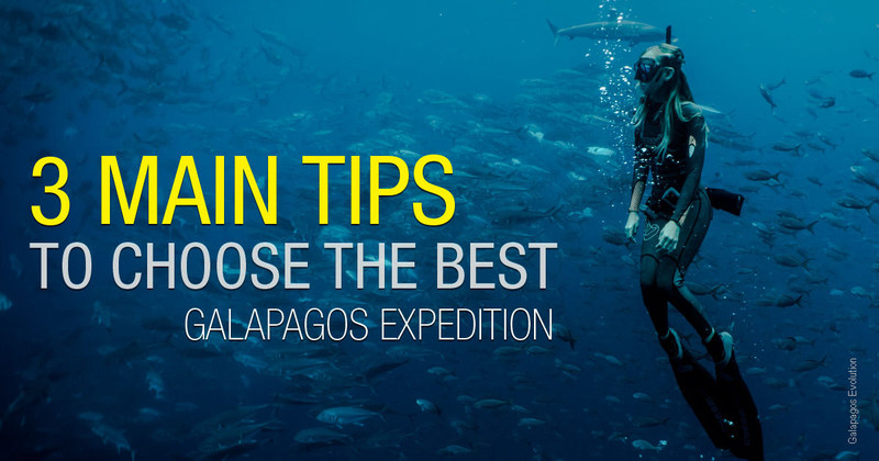 3 Main tips to choose the best Galapagos expedition tour